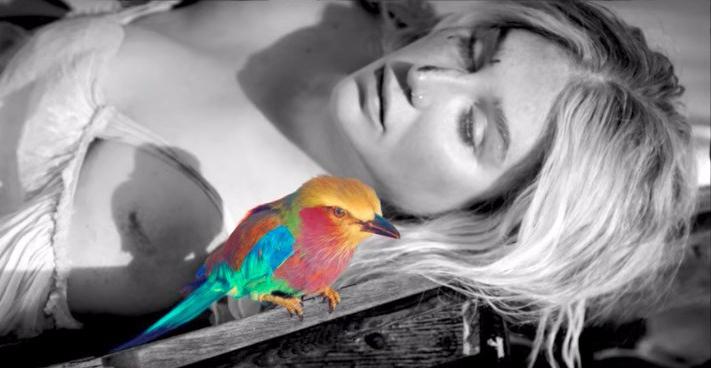 kesha-praying-music-video-rainbow-bird